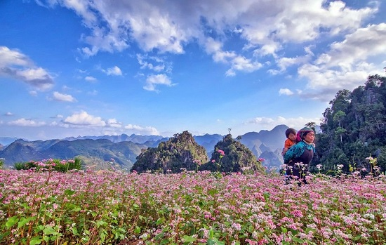 HẢI PHÒNG- HÀ GIANG- HẢI PHÒNG